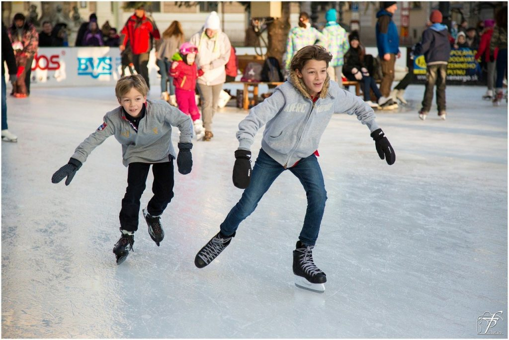 Palisades Center Ice Rink
