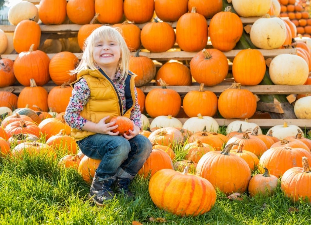 little girl sitting on pumpkins at Orchards of Concklin in Pomona, New York