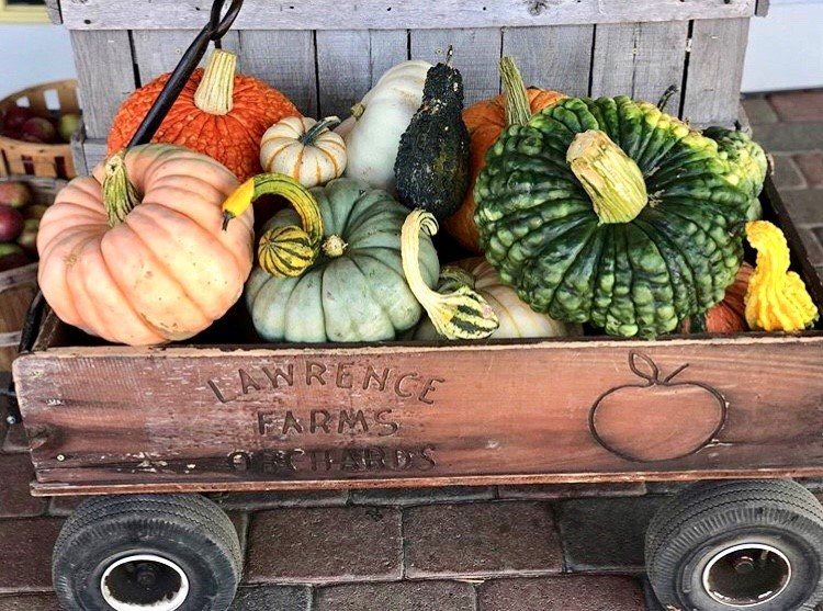 wagon full of gourds at Lawrence Farms Orchards