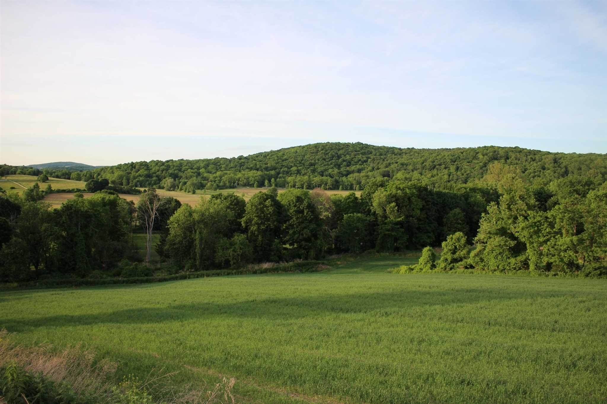 Land for Sale at 390 CARPENTER HILL ROAD Pine Plains, New York 12567 United States