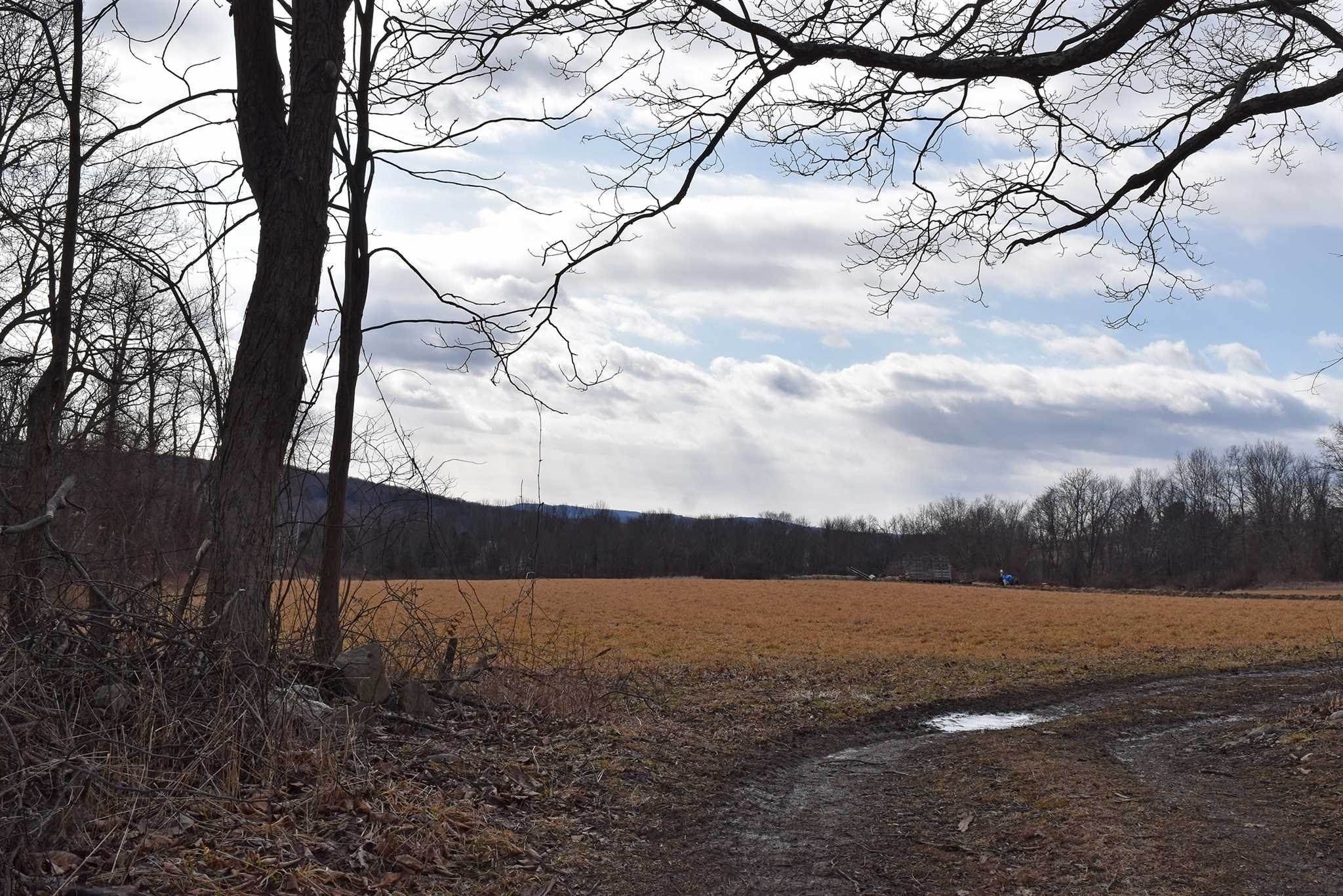 Land for Sale at 107 HOBBS Lane Stanfordville, New York 12514 United States
