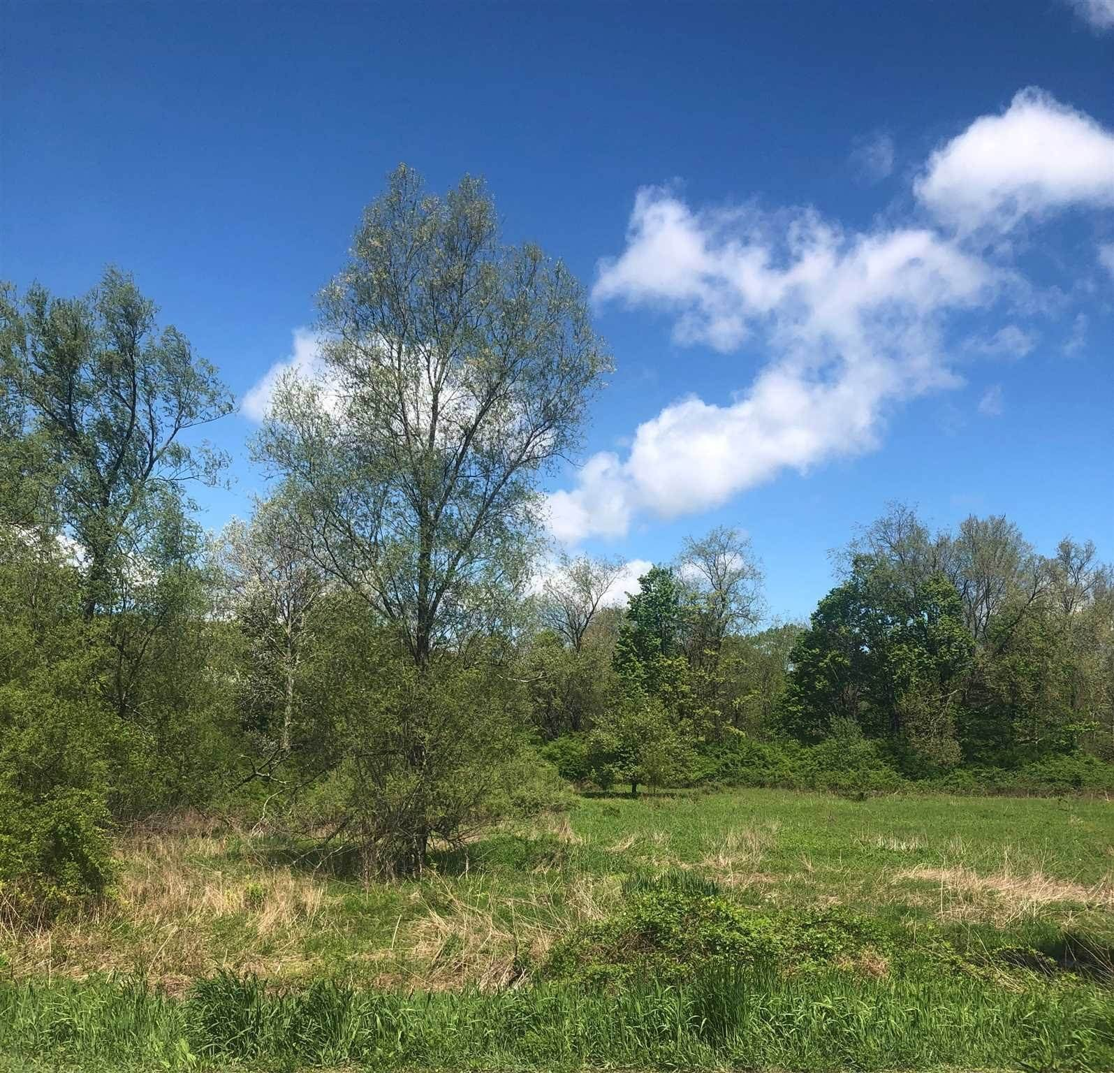 Land for Sale at 8490 N STISSING Avenue Pine Plains, New York 12567 United States
