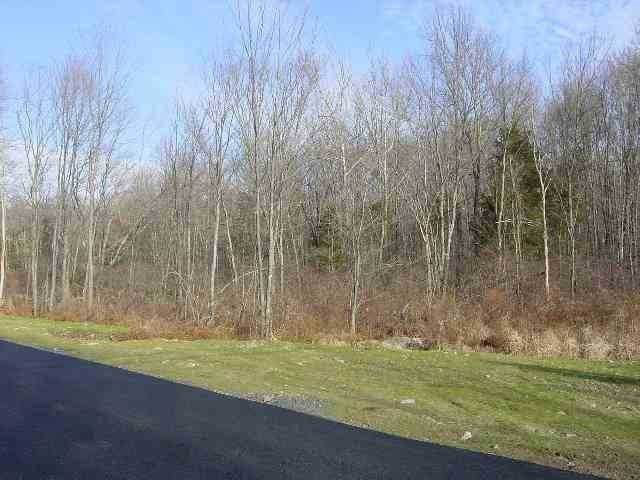 Land for Sale at 163 HUCKLEBERRY TURNPIKE Plattekill, New York 12568 United States