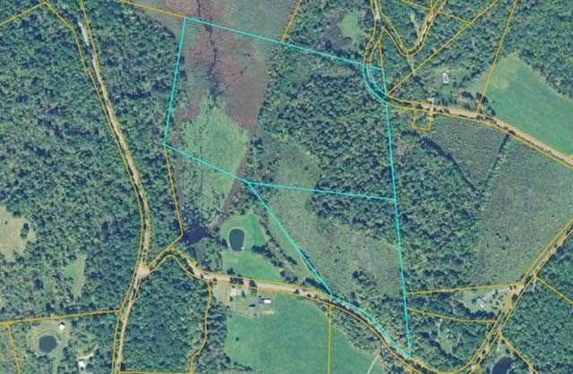Land for Sale at MAIER ROAD & MANOR R Taghkanic, New York 12521 United States