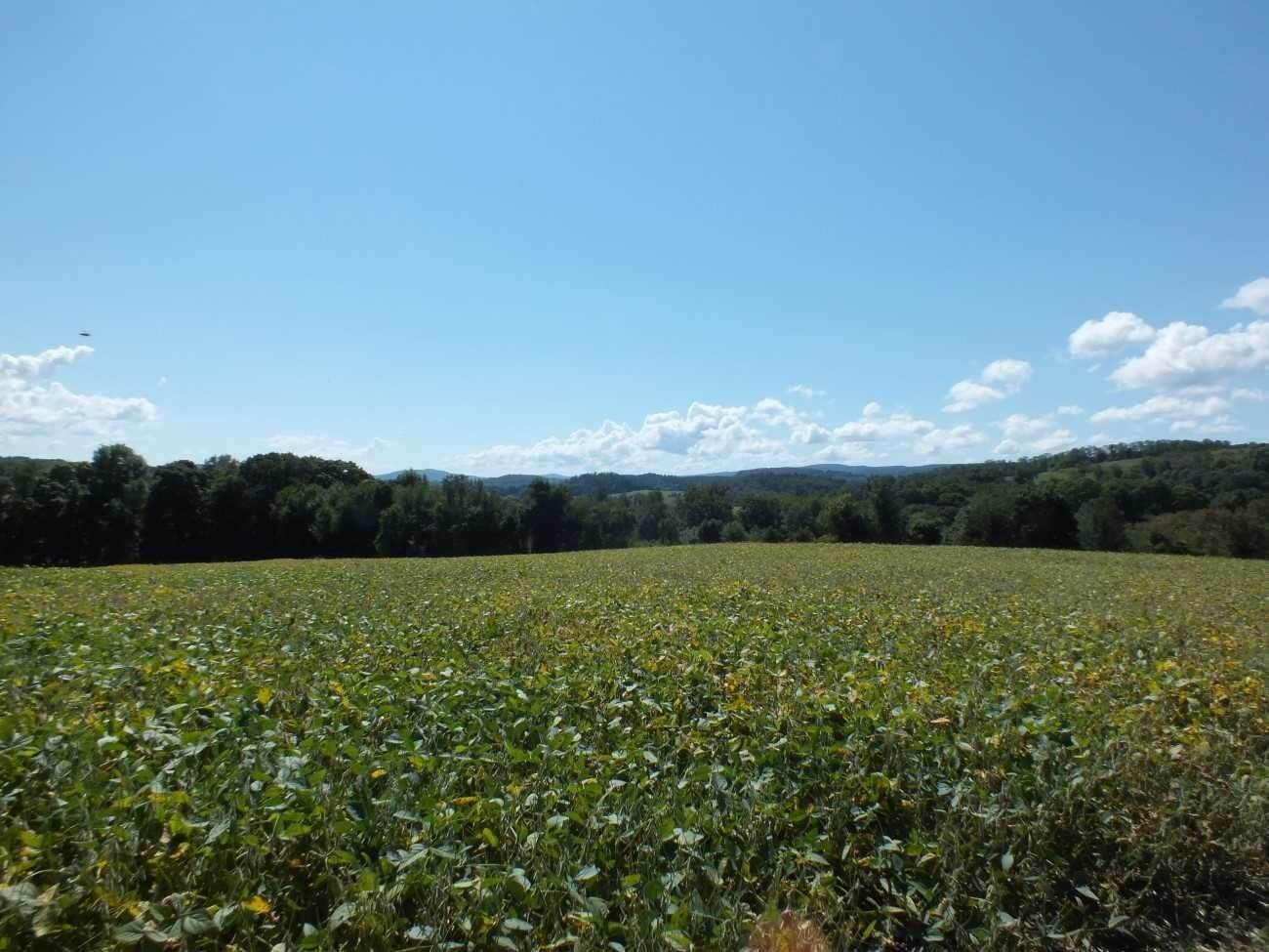 Land for Sale at INDIAN LAKE ROAD North East, New York 12546 United States