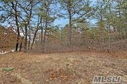 Residential Income for Sale at lot 1 Jerusalem Hollow Road Manorville, New York 11949 United States