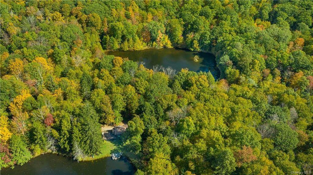 Residential for Sale at 209 S Amenia Road Wassaic, New York 12592 United States