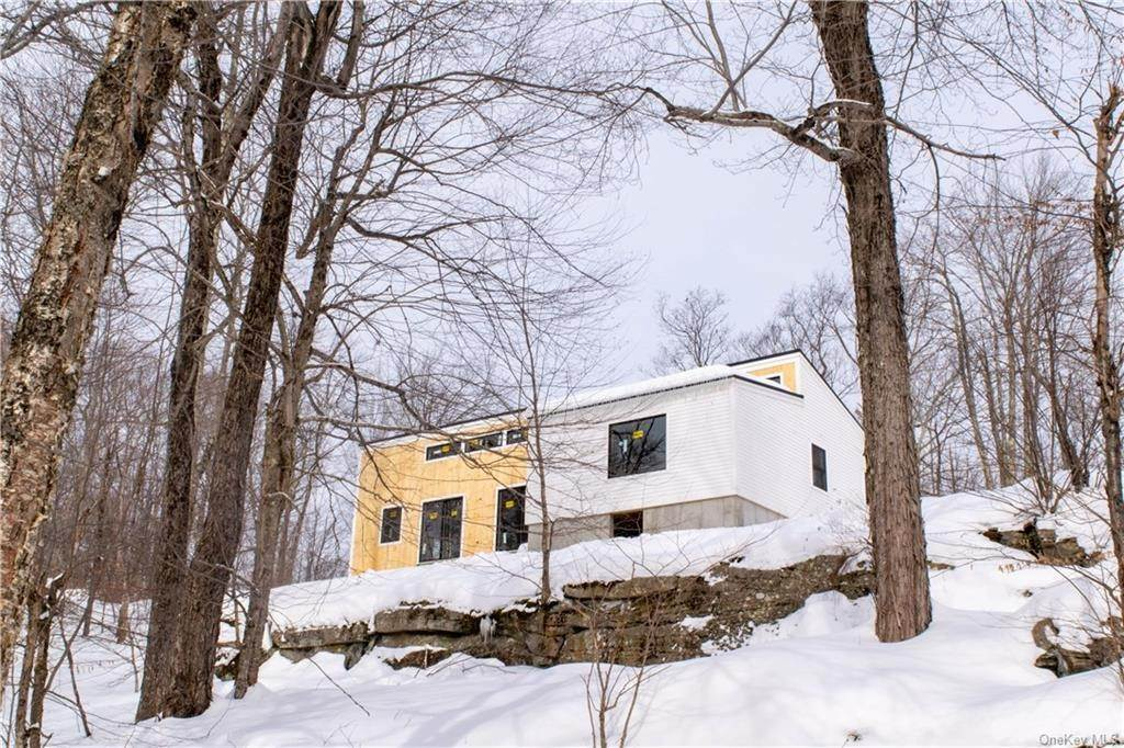 Residential for Sale at 239 Knickerbocker Road, Rockland, NY 12758 Livingston Manor, New York 12758 United States
