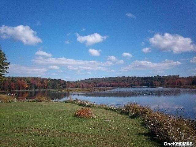 Residential for Sale at 122 Jaketown Road Swan Lake, New York 12720 United States