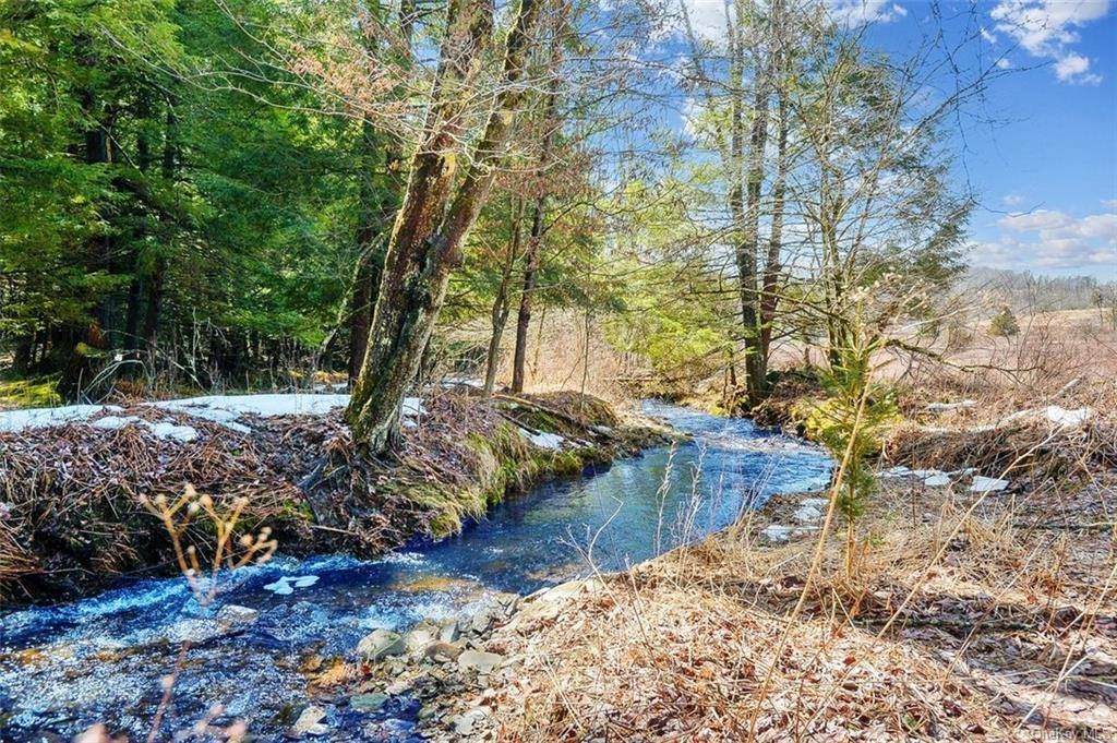 Residential for Sale at 152 Little Ireland Road Livingston Manor, New York 12758 United States
