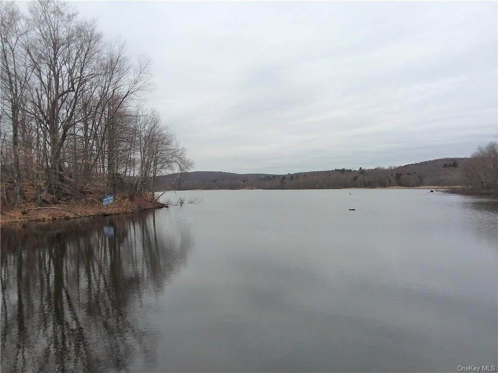 Residential for Sale at TR 40 Silver Lake Road Tr 40 Fallsburg, New York 12789 United States