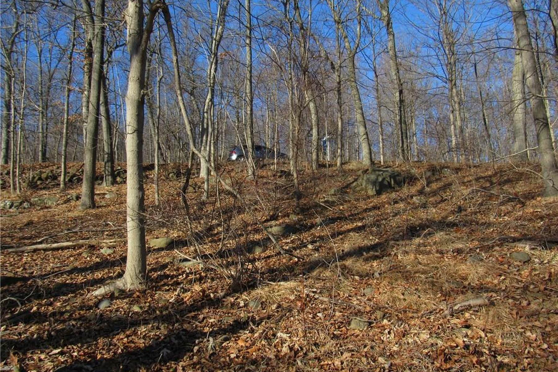 6. Land for Sale at Build Your Dream Home 81 Tweed Blvd. Upper Grandview, New York 10960 United States