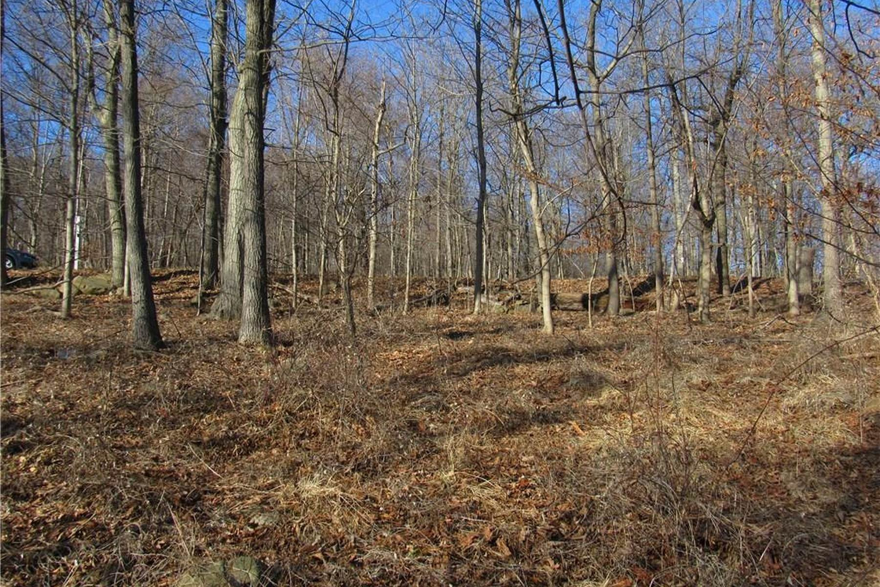 5. Land for Sale at Build Your Dream Home 81 Tweed Blvd. Upper Grandview, New York 10960 United States