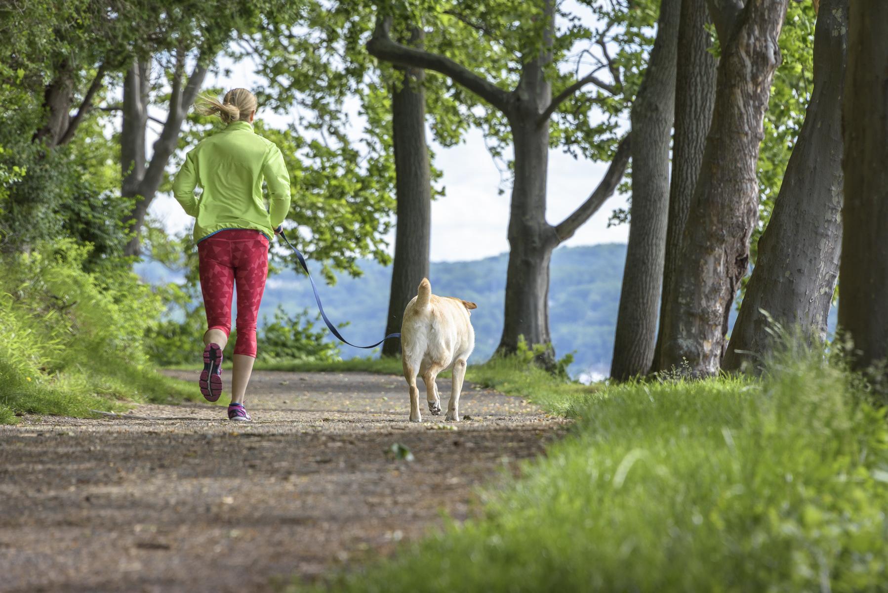 outdoor activities lower hudson valley
